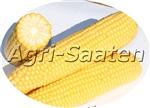 Сахарная кукуруза Вондерленд F1 NEW!!!
