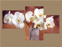 Модульная картина 174 Белые орхидеи