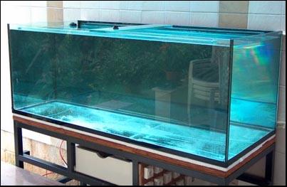 Как самому склеить большой аквариум - TSGbelg20.ru