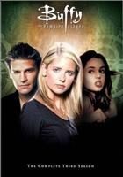 Баффи - истребительница вампиров / Buffy - the Vampire Slayer - 13 DVD (1-7 сезоны)