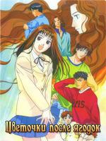 Цветочки после ягодок / Boys Over Flowers / Hana Yori Dango - 3 DVD
