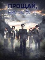 Прощай, мистер Блэк / Прощайте, мистер Блэк / Goodbye Mr. Black - 4 DVD