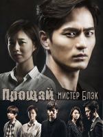 Прощай, мистер Блэк / До свидания, господин Блэк / Goodbye Mr. Black - 4 DVD (озвучка)