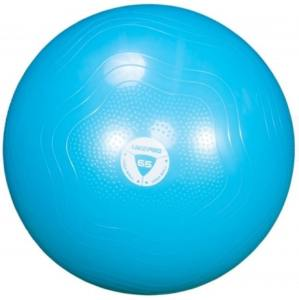 Фитбол укрепленный 65 см LivePro Anti-Burst Core-Fit Exercise Ball LP8201-65
