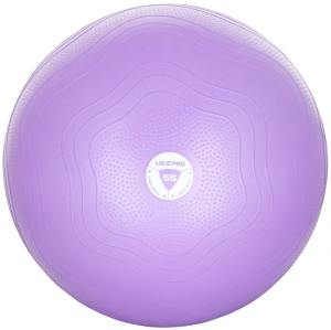 Фитбол укрепленный 55 см LivePro Anti-Burst Core-Fit Exercise Ball LP8201-55