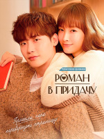 Романтическое приложение / Любовь как дополнение / Роман в придачу / Romance Is a Bonus Book / Romance is a Supplement - 4 DVD (озвучка)