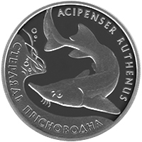Sterlet freshwater silver coin 10 uah 2012